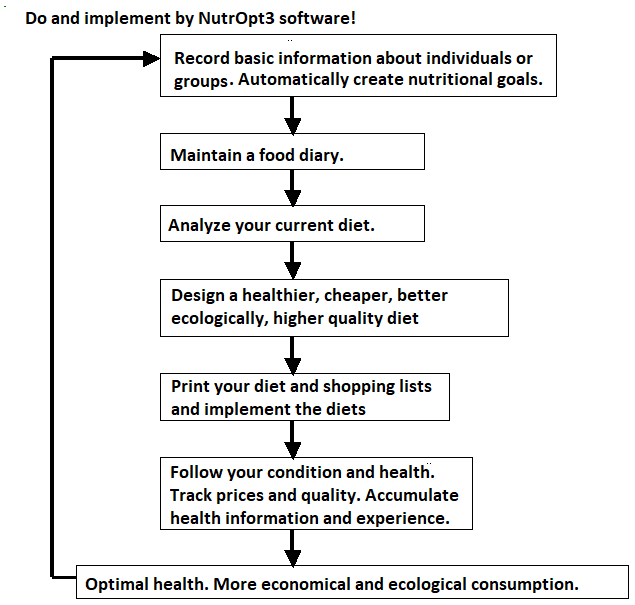 Flow Chart NutrOpt3